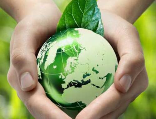 EU vil begrænse plast i naturen og genbruge al emballage